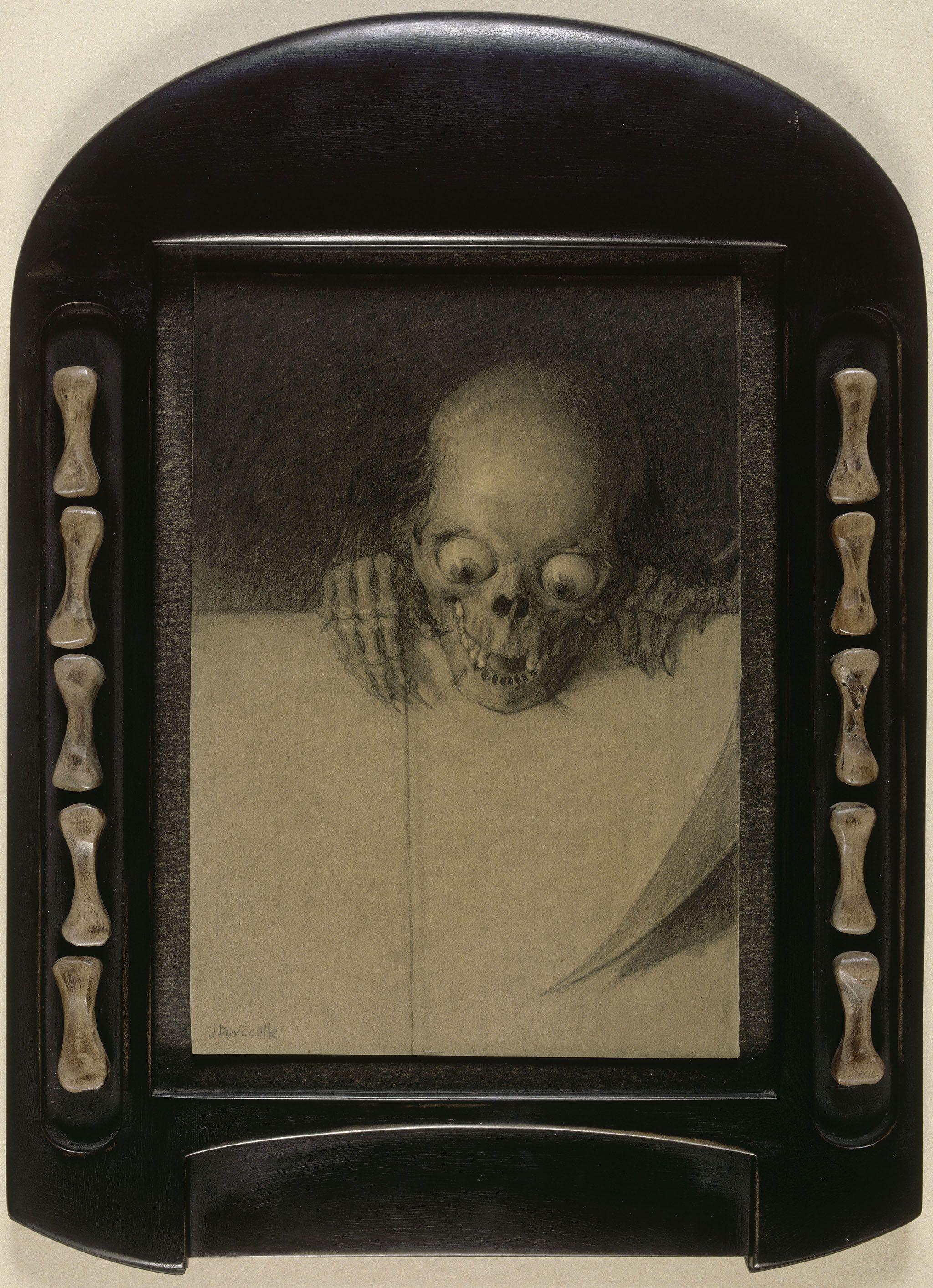 13.-Duvocelle_Crâne-aux-yeux-exorbités